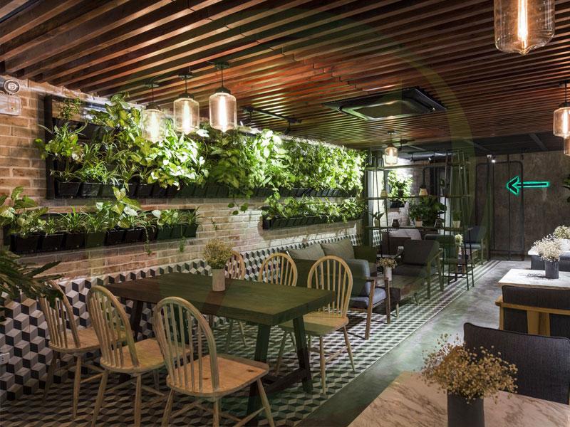 Thiết kế cảnh quan quán cafe sân vườn